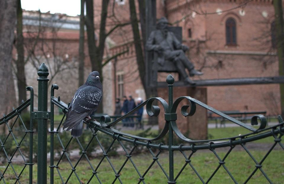 Planty krakowskie - najładniejsze parki w Krakowie
